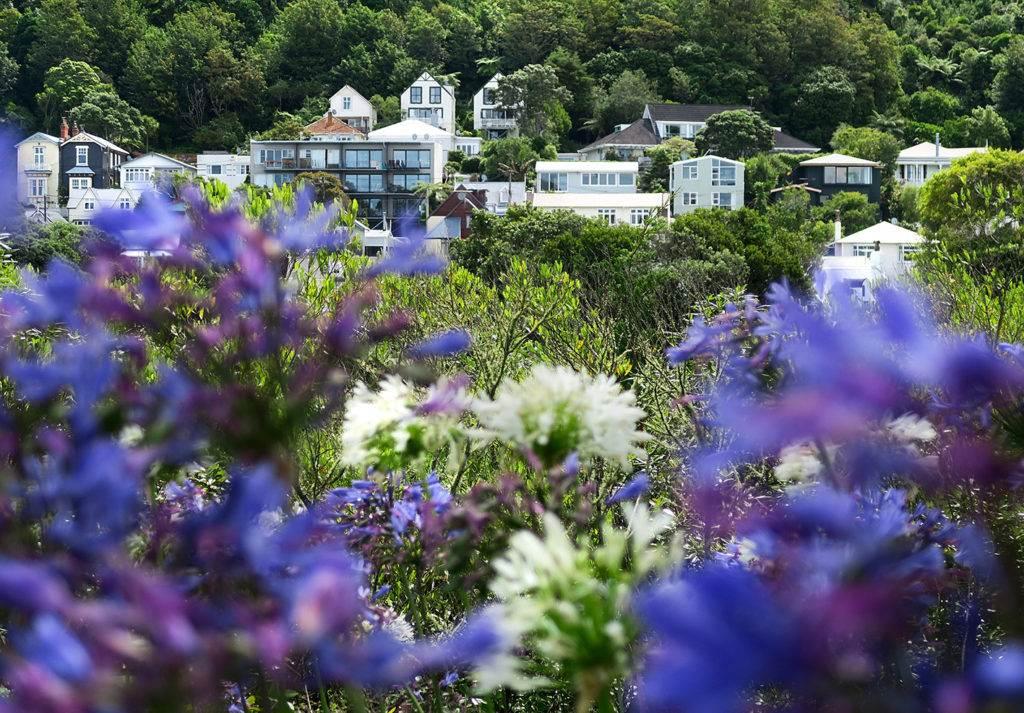 Thordon Lookout, Wellington | The Invisible Tourist