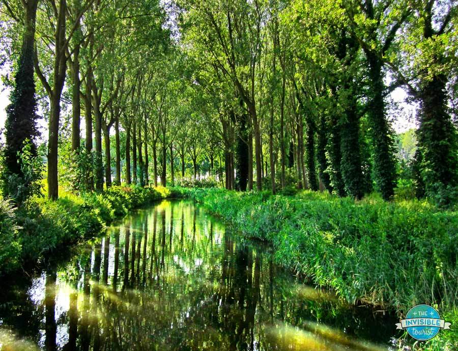 Moat and trees surrounding Damme, Belgium