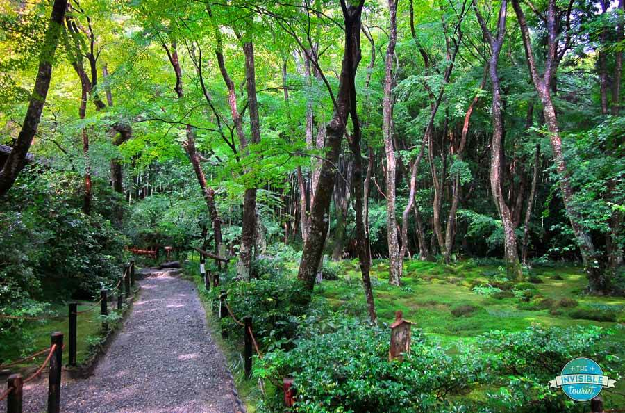 Take your time in Japan to discover hidden gems, such as Gio-ji in Kyoto