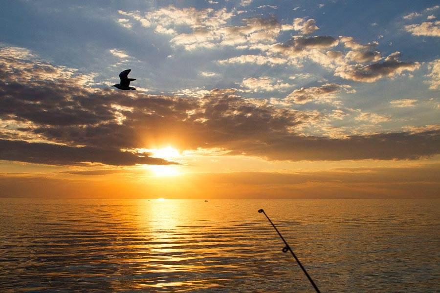 Frankston Fishing