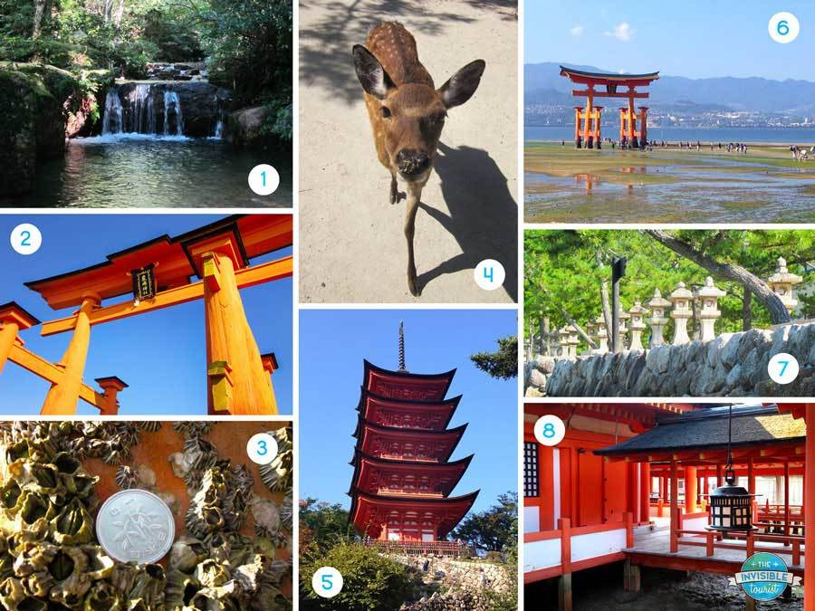 Miyajima Day Trip Highlights
