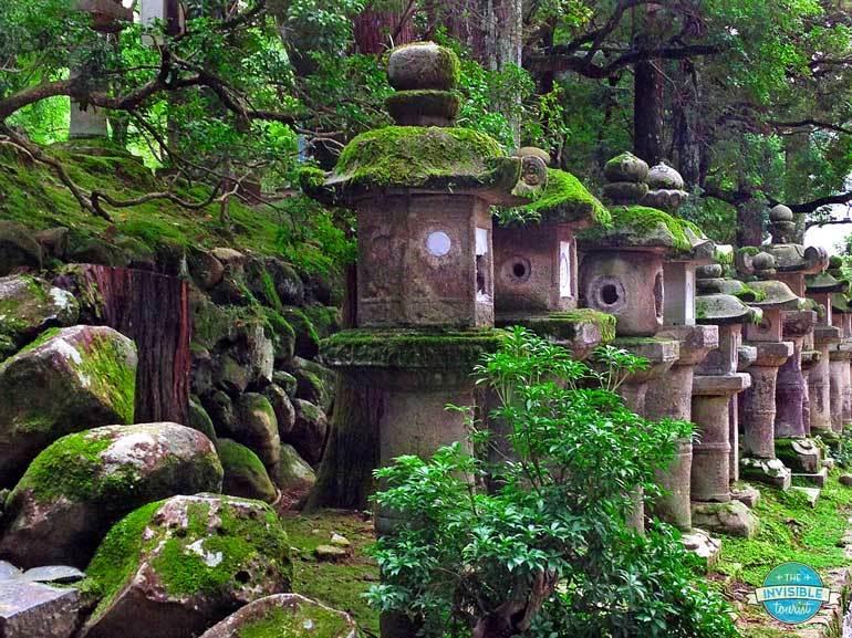 Lanternes en pierre Kasuga Taisha