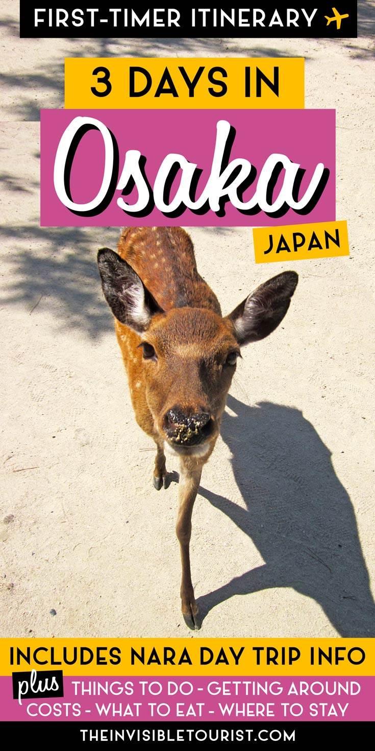 3 Day Osaka Itinerary: Complete Guide + Nara Day Trip