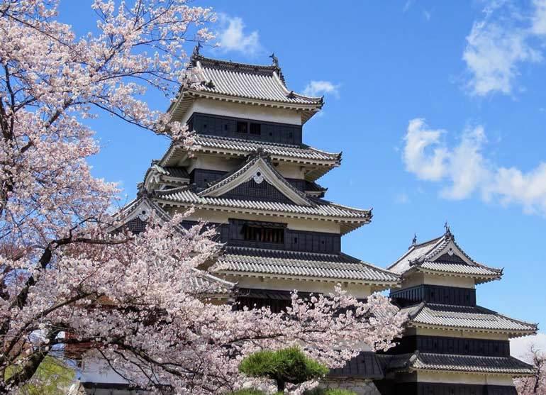 Meilleur moment pour visiter le Japon pour les fleurs de cerisier: le château de Matsumoto à la mi-avril