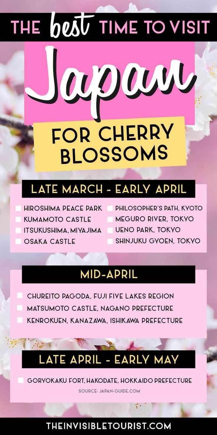 Quel est le meilleur moment pour visiter le Japon pour les fleurs de cerisier | Le touriste invisible