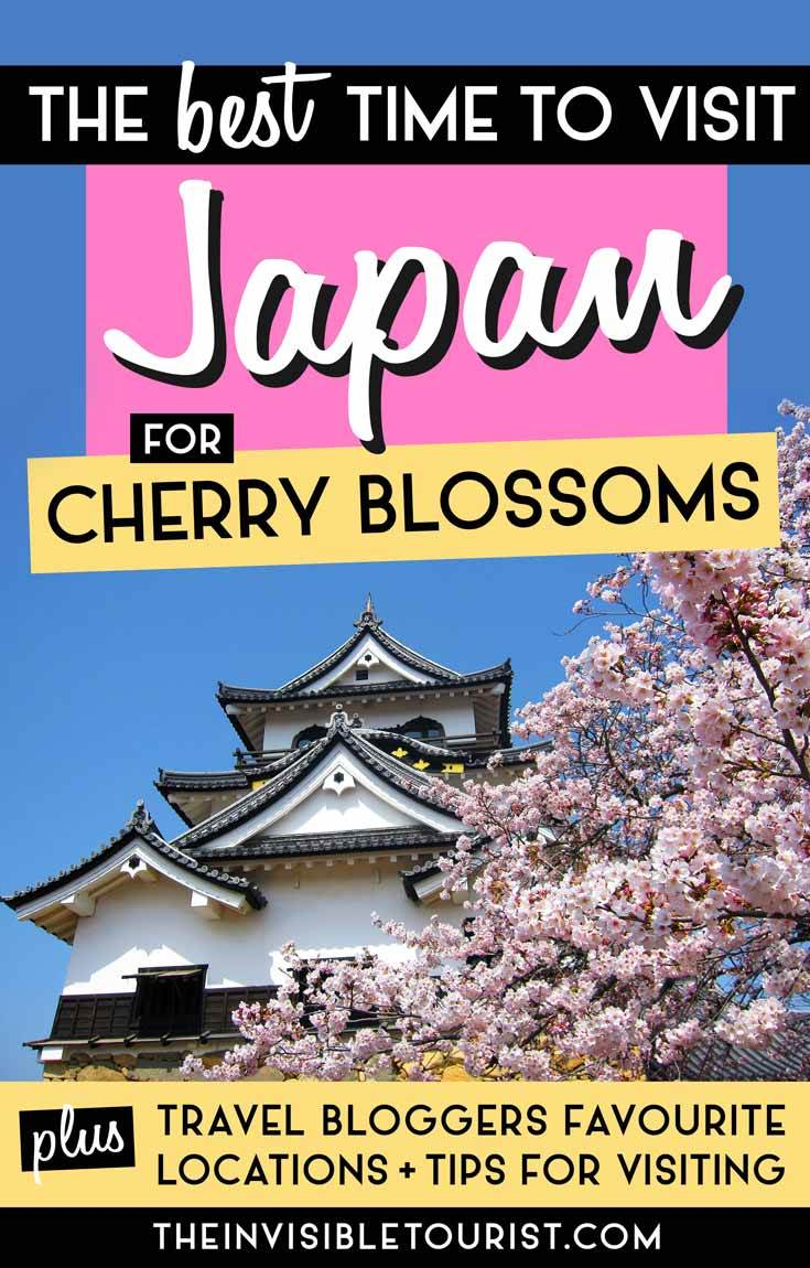 When is the Best Time to Visit Japan for Cherry Blossoms | Le touriste invisible