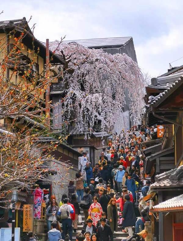 Meilleur moment pour visiter le Japon pour les fleurs de cerisier: Sannenzaka, Kyoto début avril