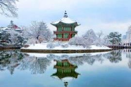 10 South Korea Travel Tips to Help you NOT Look Like a Tourist | The Invisible Tourist