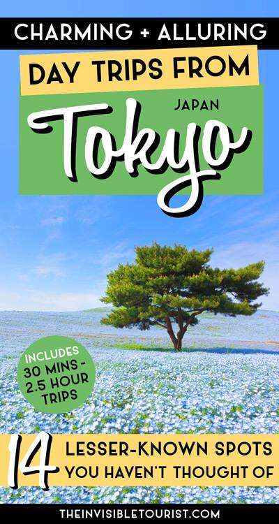 Excursions d'une journée incroyables toute l'année au départ de Tokyo auxquelles vous n'avez pas pensé | Le touriste invisible