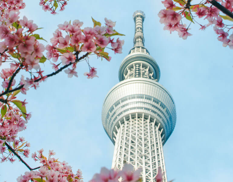 Spring in Japan: Where to Go, What to Pack (& How to Avoid Crowds)